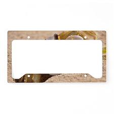 Fiddler Crab License Plate Holder
