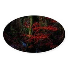 woodland_stream Decal