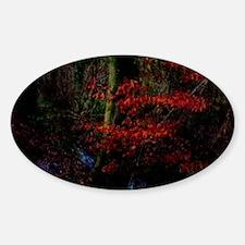 woodland_stream Decal