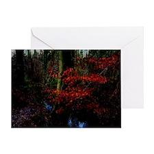 woodland_stream Greeting Card