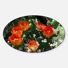 orange_pear_lp Sticker (Oval)