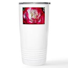 dk_pink_rose_card Travel Mug