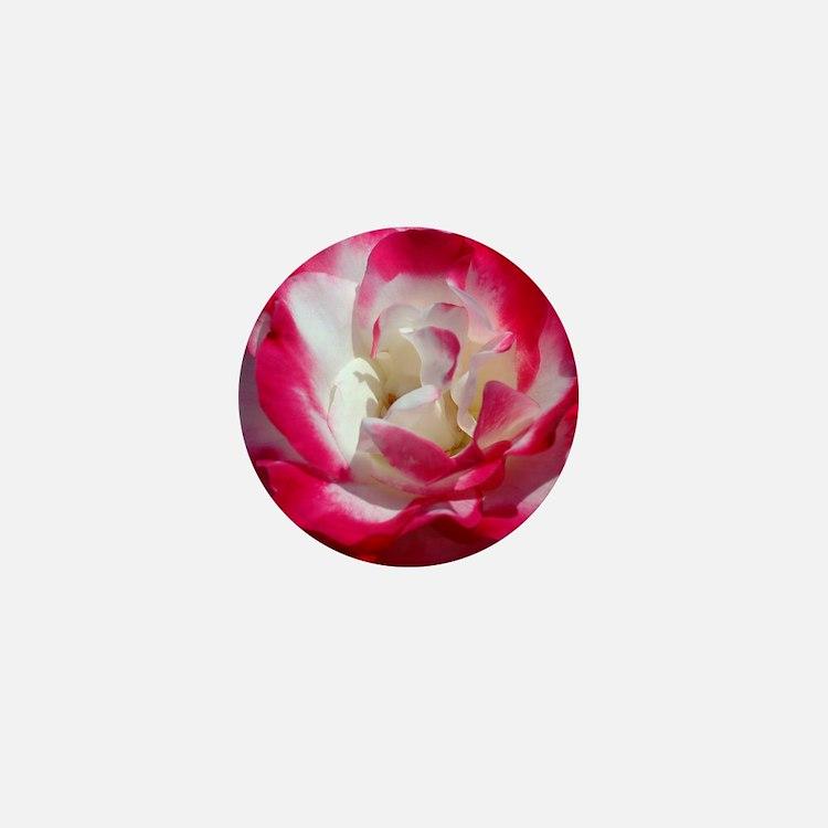 dk_pink_rose_calendar Mini Button