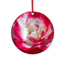 dk_pink_rose_calendar Round Ornament