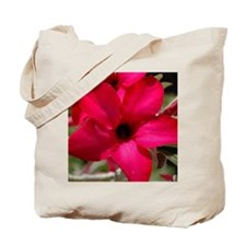 pink_lily_mpad Tote Bag