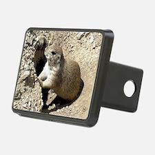 Prairiedog2_card Hitch Cover