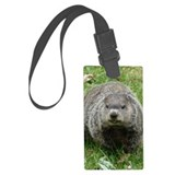 Ground hog day Luggage Tags