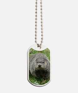 GrH2.34x3.2 Dog Tags