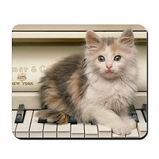 piano kitten pillow Mousepad