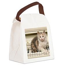 piano kitten pillow Canvas Lunch Bag