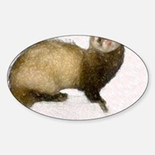 ferretcalferret2 Sticker (Oval)