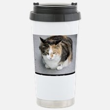 cat1 copy Stainless Steel Travel Mug