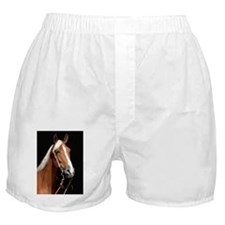 chestnut_443 Boxer Shorts