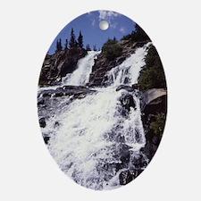 Colorado Waterfall jrnl Oval Ornament