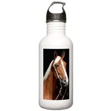 chestnut_441 Water Bottle