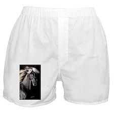 choco_441 Boxer Shorts