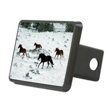 snowrun_Lg_framed Hitch Cover
