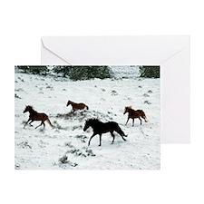 snowrun_Lg_framed Greeting Card
