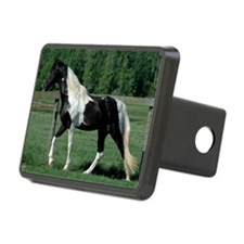 spots_Lg_framed Hitch Cover