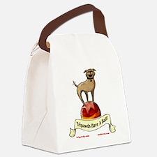 floydball t-shirt BLK 10x10 three Canvas Lunch Bag