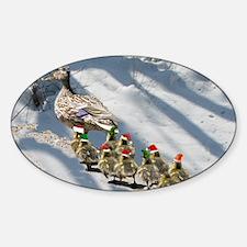 holiday ducks Decal