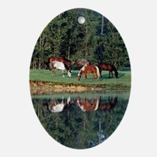 reflection_lgp Oval Ornament