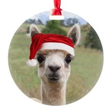 Sheba Alpaca at Christmas Ornament