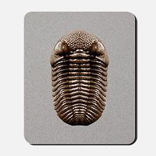 trilobiteIP Mousepad