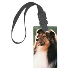 441_iphoneCasey Luggage Tag