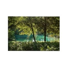 Ichetucknee Springs Florida Rectangle Magnet