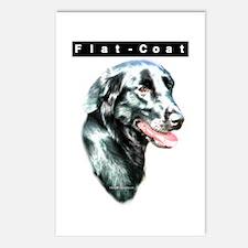 Flat-Coat Head Postcards (Package of 8)