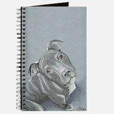 pitbull-7 Journal