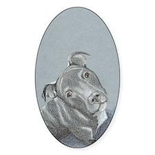 pitbull-7 Decal