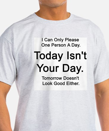 Today Isn't Your Day  Ash Grey T-Shirt