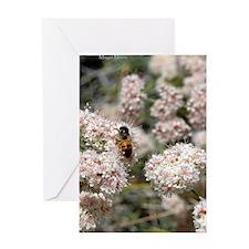 bkwheatbee443 Greeting Card