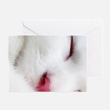 white cat mousepad Greeting Card