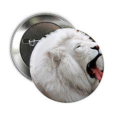 """White Lion calendar 2.25"""" Button"""