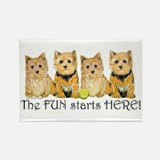 Norwich Terrier Fun Rectangle Magnet (10 pack)