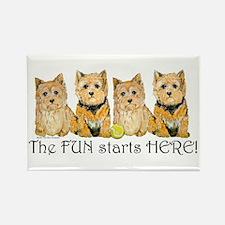 Norwich Terrier Fun Rectangle Magnet
