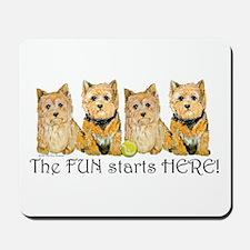 Norwich Terrier Fun Mousepad