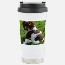 Apolo Travel Mug