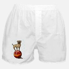 Holiday Card 5x7 floyd front Boxer Shorts
