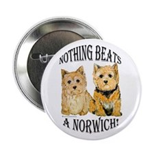 Nothing Beats a Norwich Terri Button
