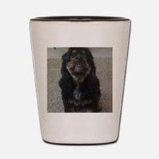 Pets Shot Glass