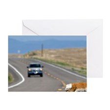 Pronghorn antelope crossing the road Greeting Card