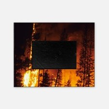 A wildfire in the Boise National For Picture Frame
