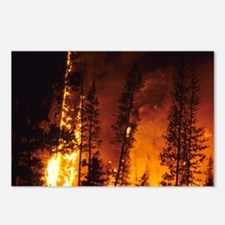 A wildfire in the Boise N Postcards (Package of 8)