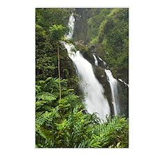 Waikani Falls, Hana Highw Postcards (Package of 8)