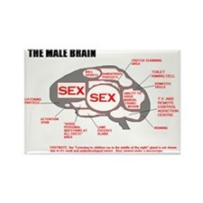 MALE BRAIN Rectangle Magnet