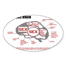MALE BRAIN Decal